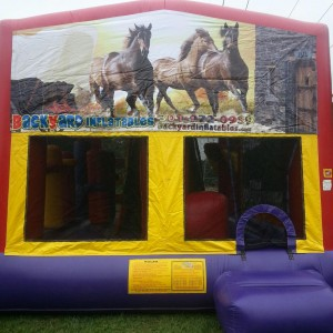 Horse Moon Bounce with slide