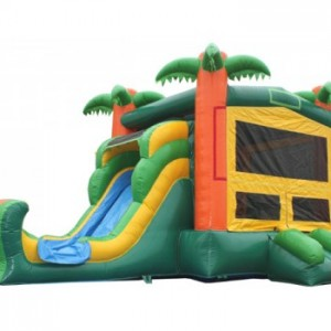 palm tree moon bounce